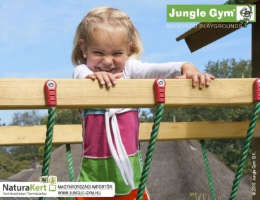 jungle_gym_net_link_2